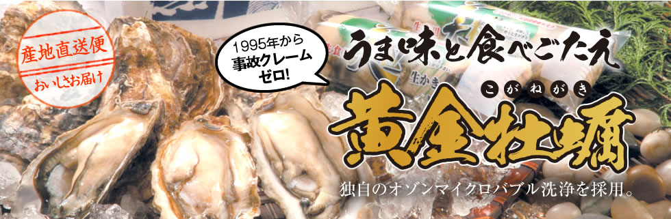 うま味と食べごたえ黄金牡蠣